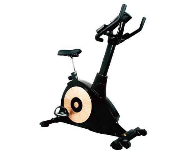 豪华磁控健身车